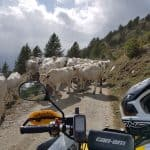 QUAD & ATV Offroad - Tour Forte Jafferau-15